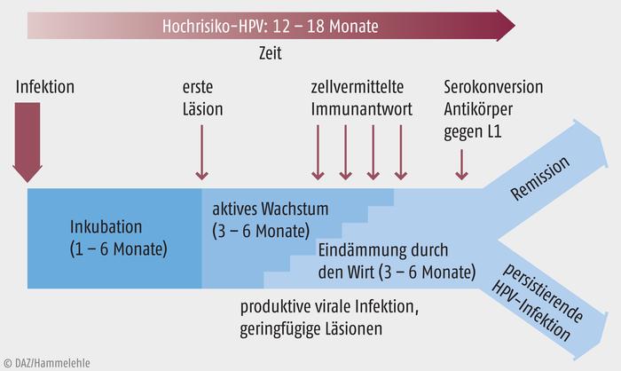 Schema de tratament helmint, Candidoza - infecția fungică ce nu trebuie ignorată