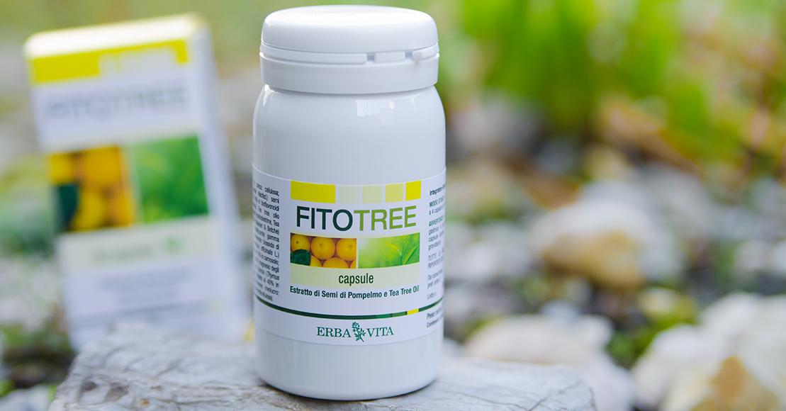 FitoTree - szabadalommal védett parazita és gombaölő kapszula. Mikrokapszulázott hatóanyagok. 60db