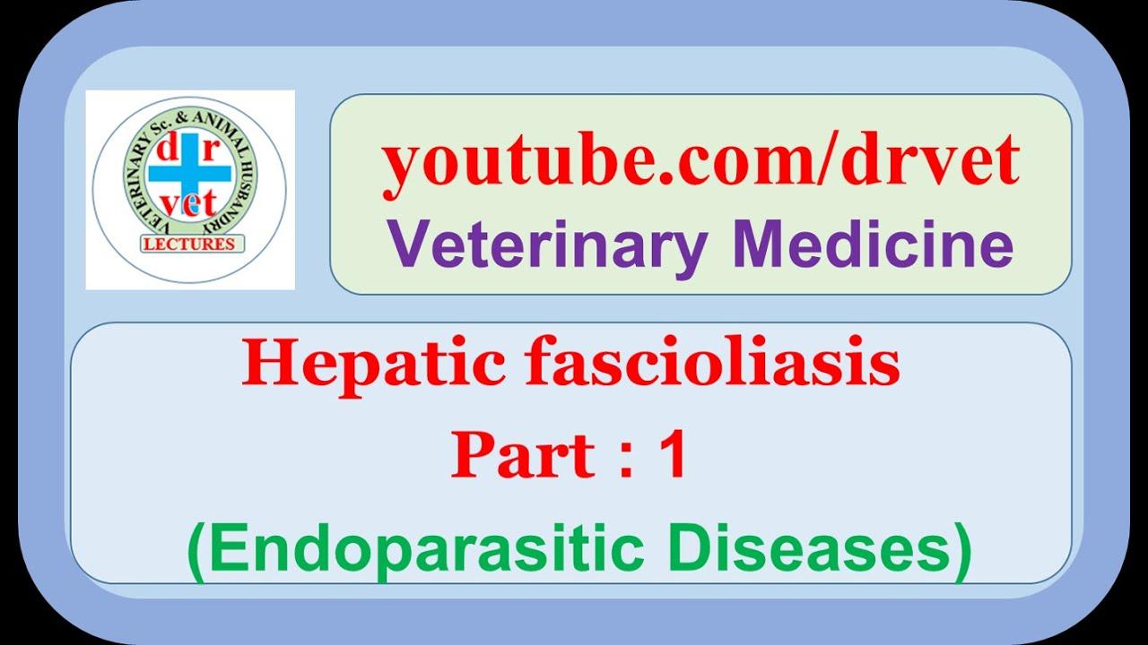 a fascioliasis patomorfológiája férgek elleni gyógyszer browanol