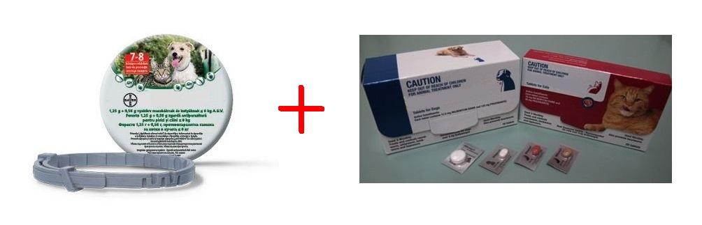 Gyógyszer a szív férgek ellen Itt a szúnyogszezon – itt a szívférgesség!