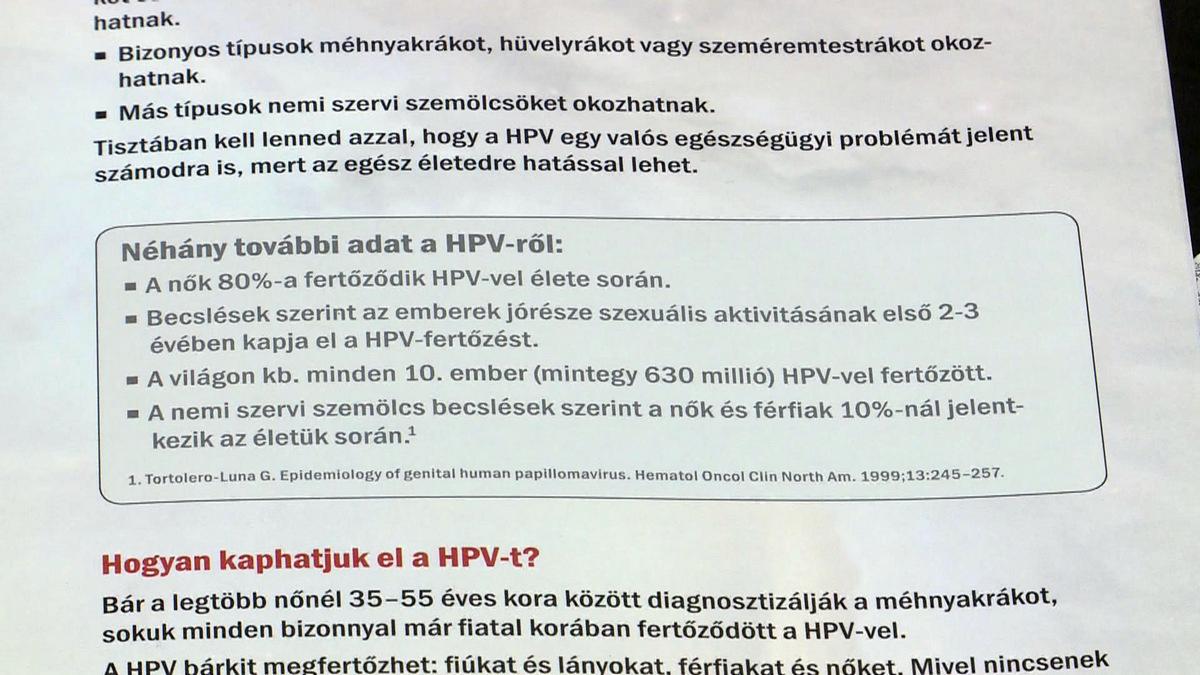 A leggyakoribb tévhitek a HPV-ről