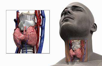 hpv vizelet tünetei papilloma condyloma kezelés