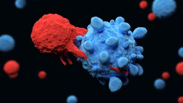 6 veszélyes fertőzés, ami rákot okozhat: mindegyik más daganatért felelős - Egészség | Femina