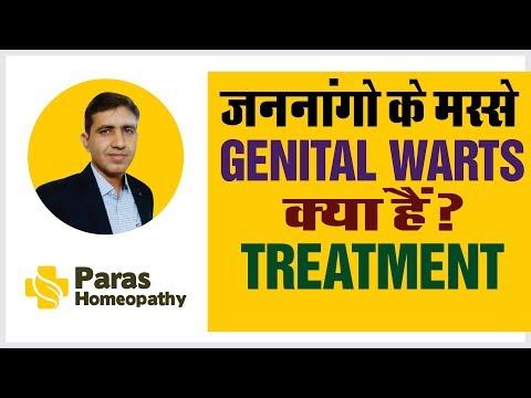 a condyloma patogenezise