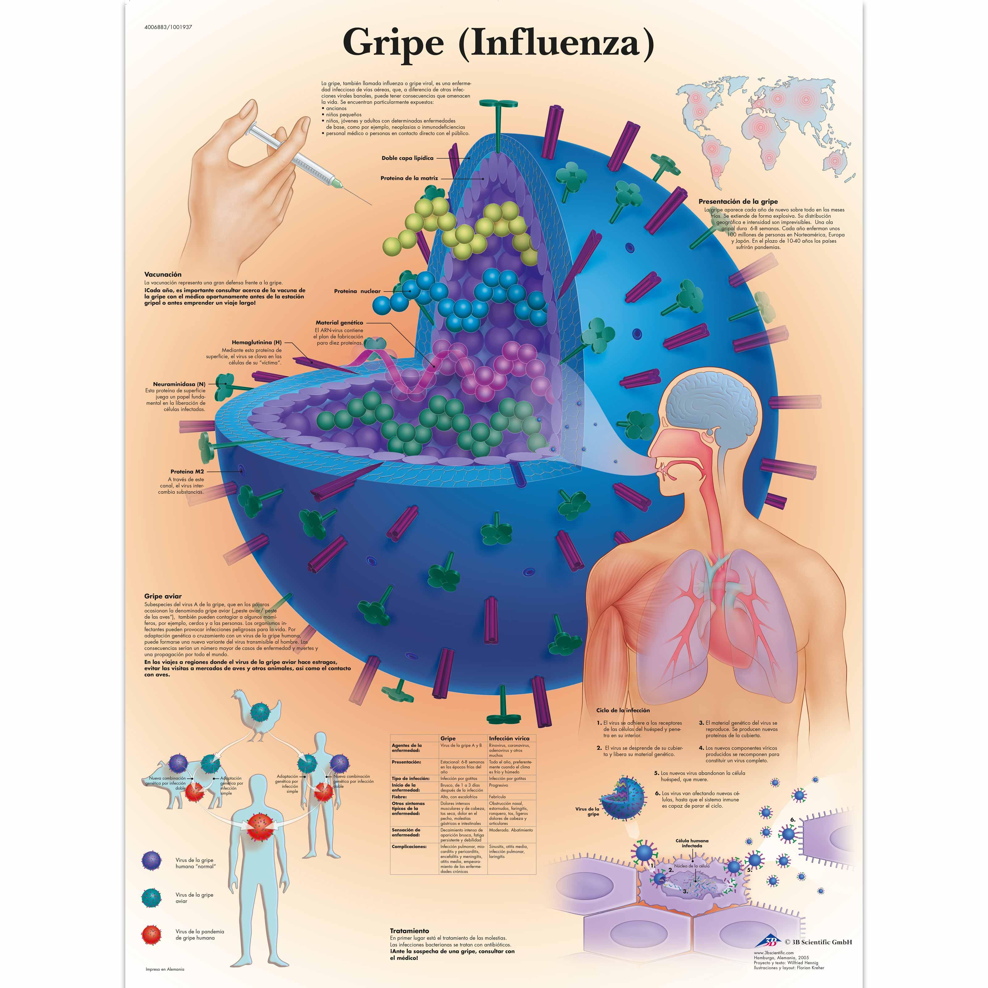 ANTSZ - Vírus, baktérium, antibiotikum: mi micsoda?
