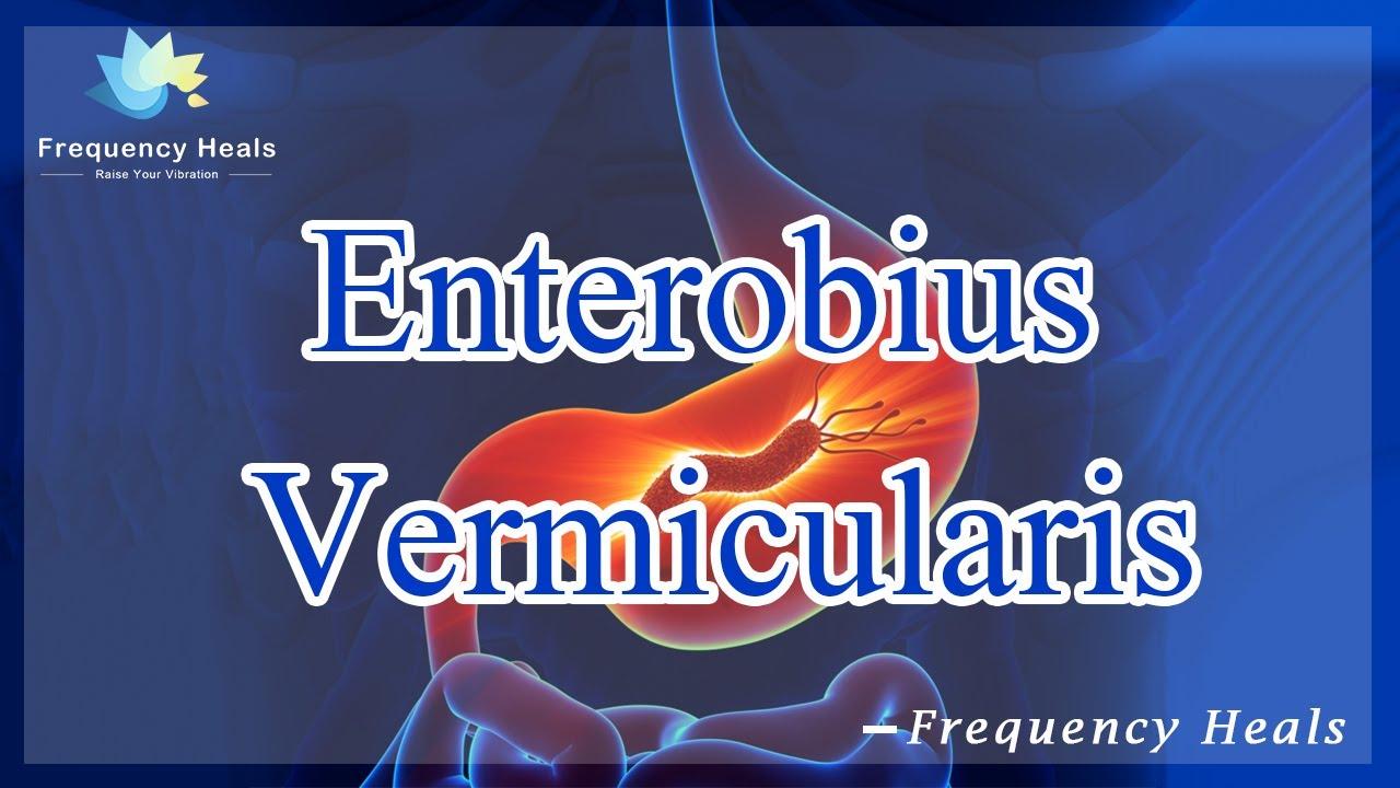 enterobius vermicularis cikk hímivarú papilloma vírus