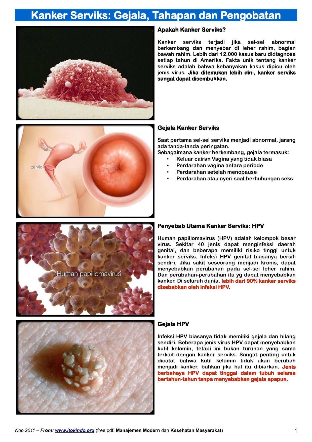 Fokozott immunitású papillomavírus