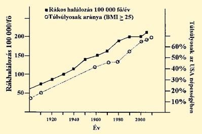 Hasnyálmirigyrák – Wikipédia