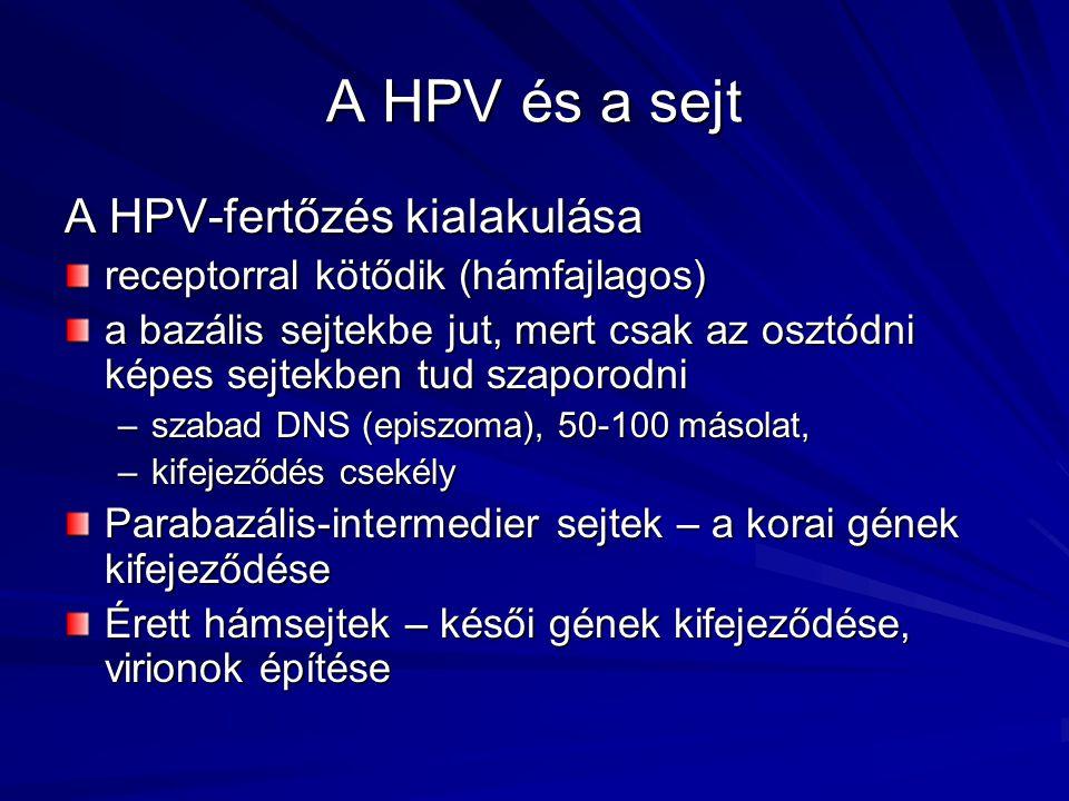 hpv lsil tünetek