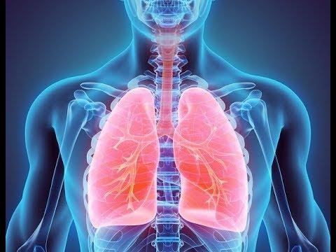 a tüdőbetegségek inváziója tengeri féreg robbanás szállítása