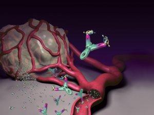 agresszív rák meghatározza a legjobb természetes kezelés bélparaziták
