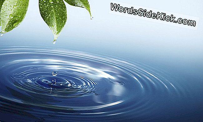 schistosomiasis víz