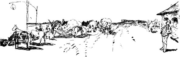 Brehm: Az állatok világa / FÜGGELÉK: HÚRFÉRGEK (NEMATOMORPHA)