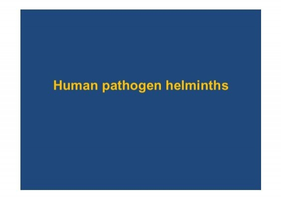 helminthiasis galandféreg