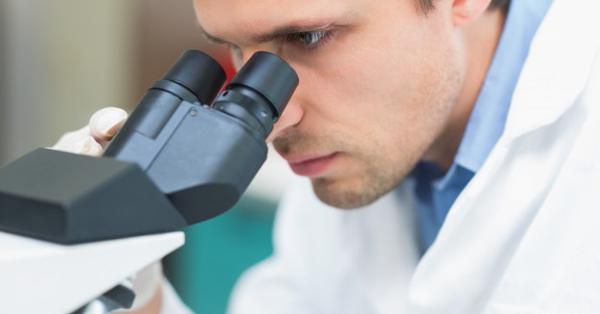 Szemölcsök a perineumban. Női genitális szemölcsök: okai és kezelése - Megelőzés September