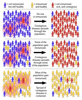 Herpesz és papillomatosis: hasonlóságok és különbségek, okok, kapcsolat - A férfiaknál October