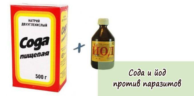 Tinktura protiv parazitá recept - Jod protiv parazita - Tinktura protiv parazita recept