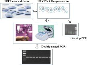 Klinikai vizsgálatok keresése: HPV Vaccine