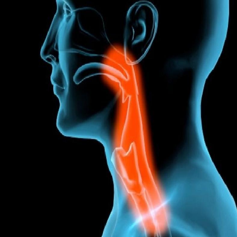 HPV: mikor segít a fül-orr-gégész?