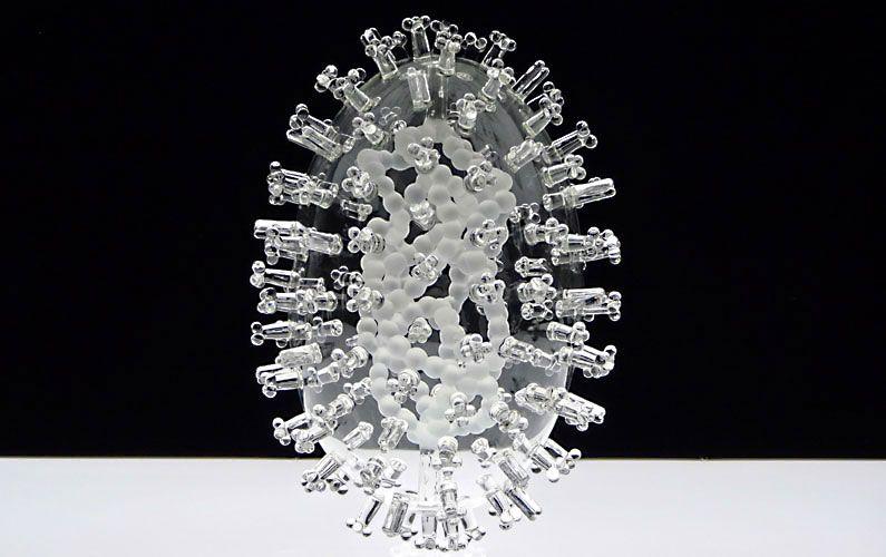 HPV vírus, HPV fertőzés, HPV terjedése   HPVdoktor