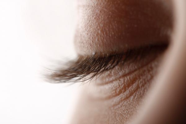 Papilloma a belső szemhéj szemében