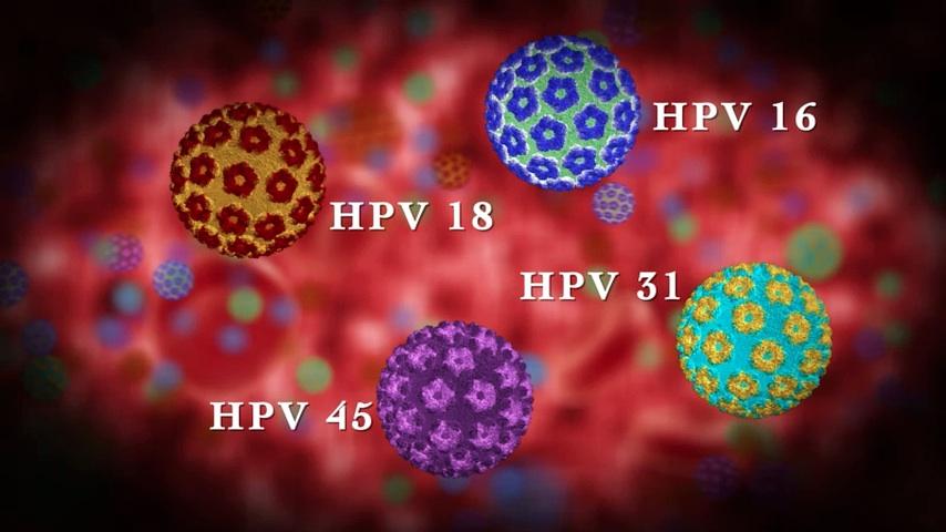 Lezárult a HPV program | Demokrata