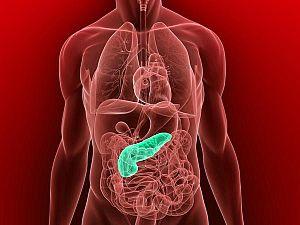 papilloma eltávolító fórum enterobius vermicularis cikk