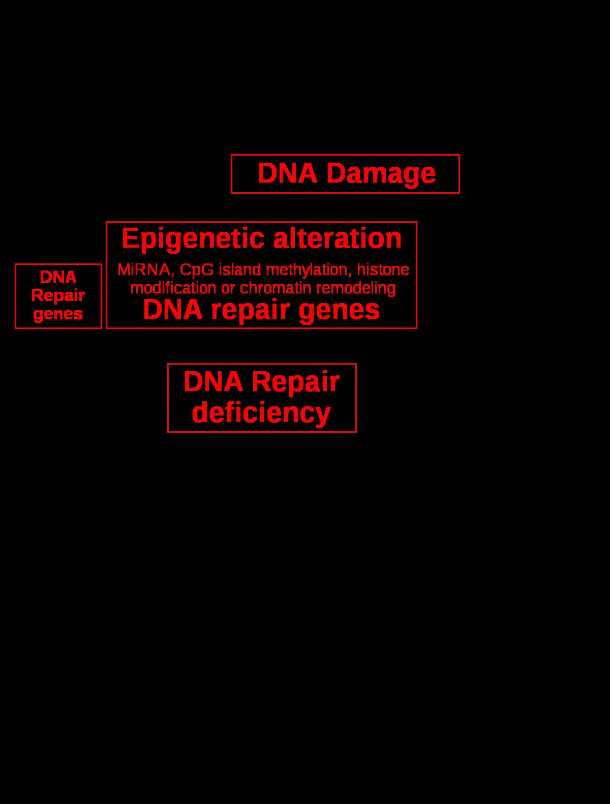 az endometrium rák genetikai hogyan lehet megtisztítani az emberi test szemetét