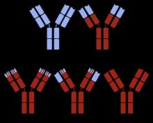 A fehérvérsejtek megtámadják e a parazitákat - A fehérvérsejtek megtámadják ea parazitákat