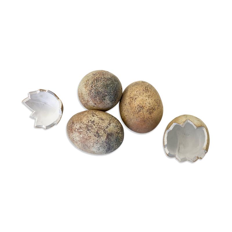 Éhség és pinwormok, A pinworm tojás érlelődik - A pinwormok kezelése: tünetek és gyógyszerek