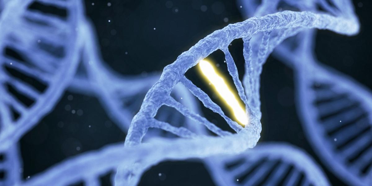 hasnyálmirigyrák genetika
