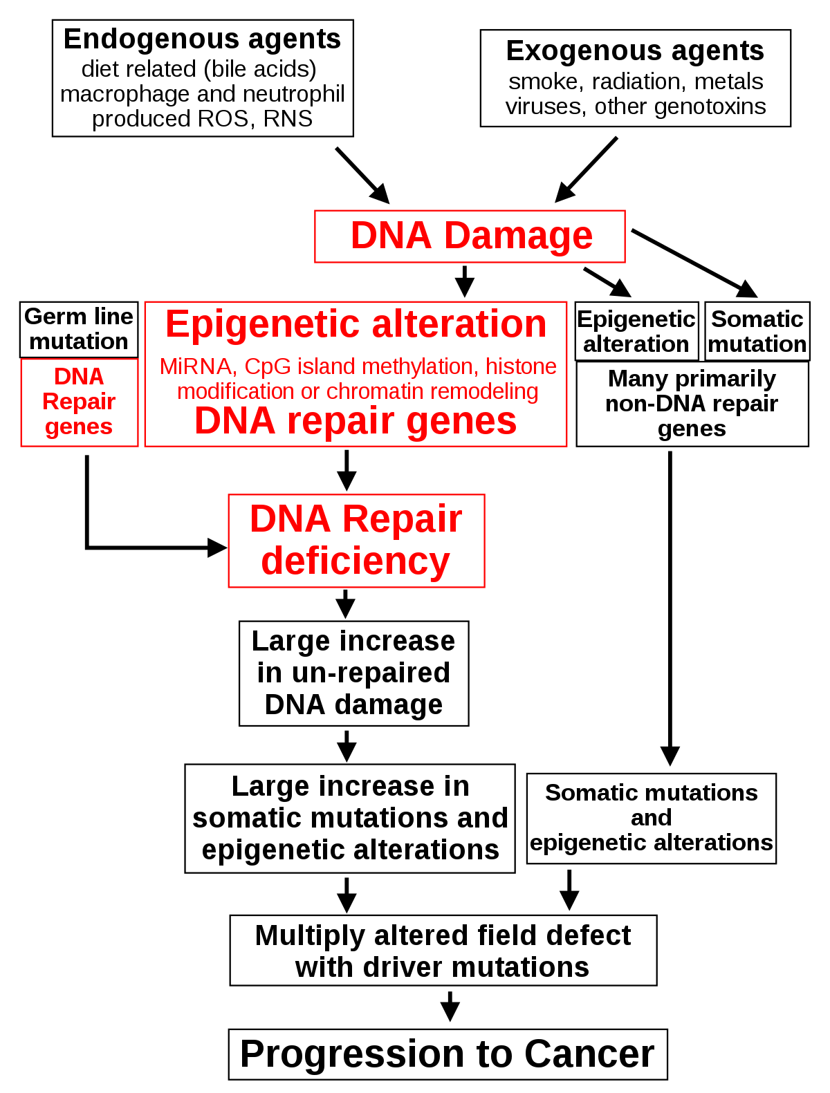 mikroparazita szakértő féreginvázió forrása